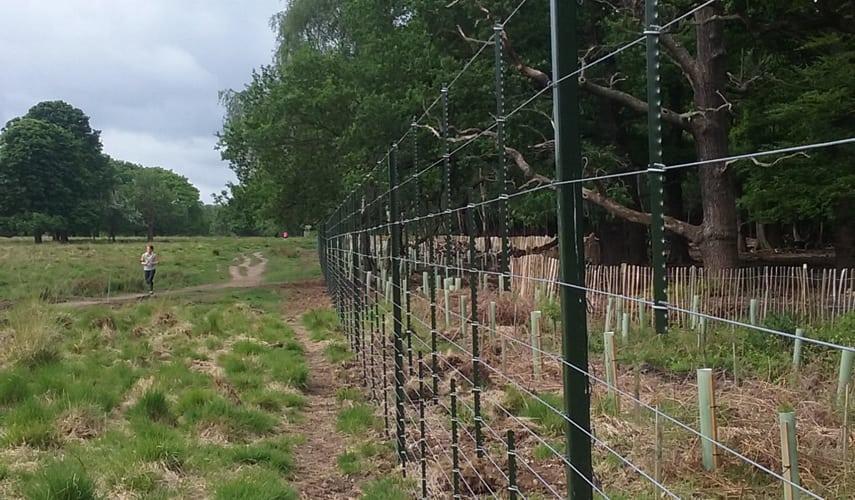 Corrie H6 Highways Fencing